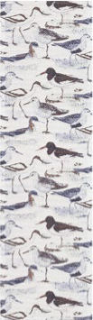Oyster Catcher Runner